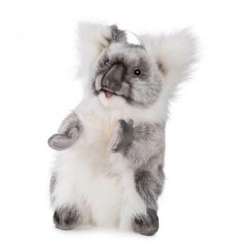 Koala marionetta