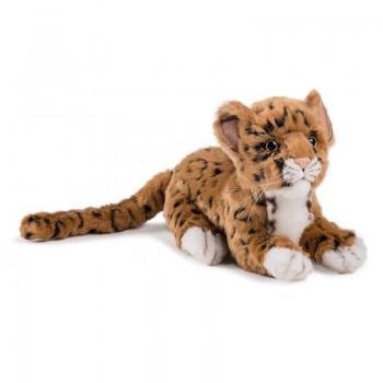 Cucciolo di giaguaro