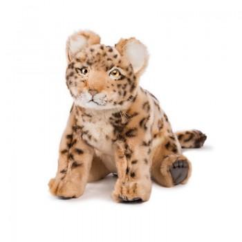 Cucciolo di Leopardo seduto