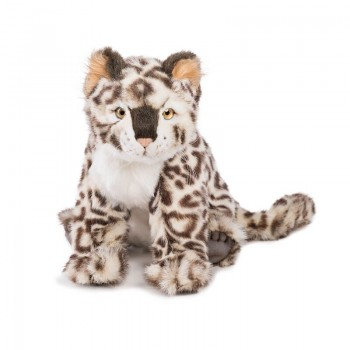 Cucciolo di Leopardo delle nevi seduto