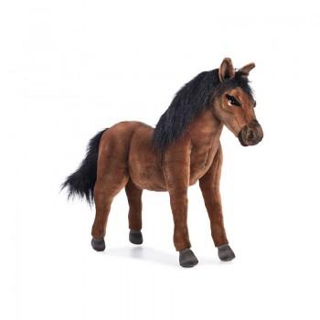 Cavallo baio