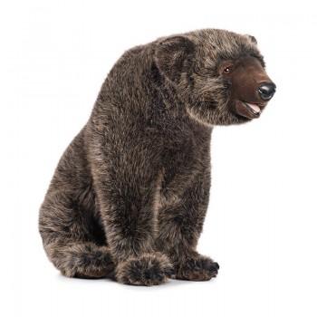 Grizzly seduto