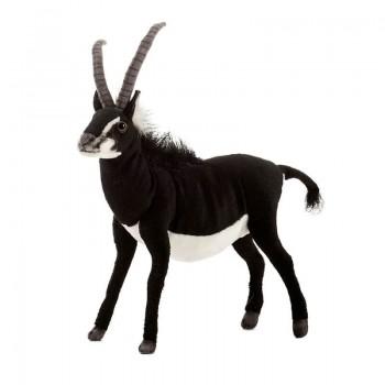 Antilope orice