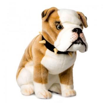 Bulldog seduto