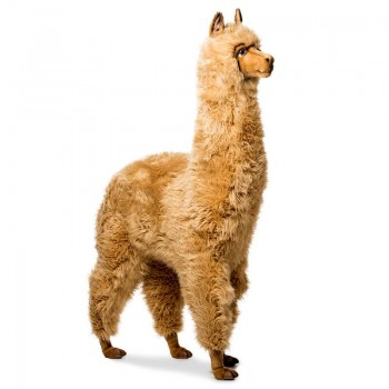 ALPACA Hansa Creation