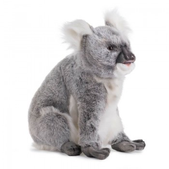 KOALA Hansa Creation