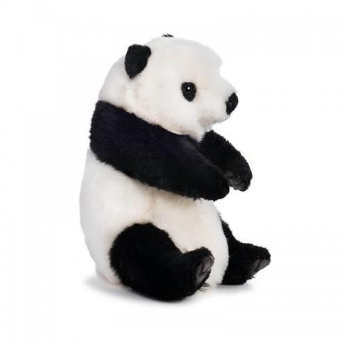 PANDA Hansa Creation
