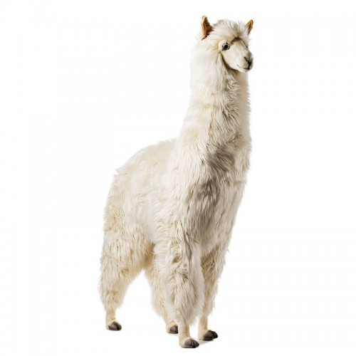 ALPACA BIANCO Hansa Creation