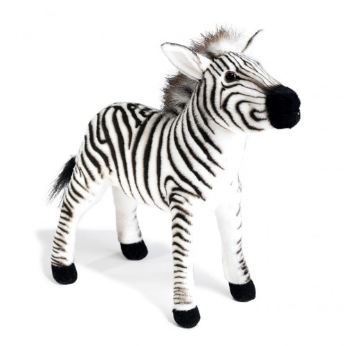 ZEBRA Hansa Creation
